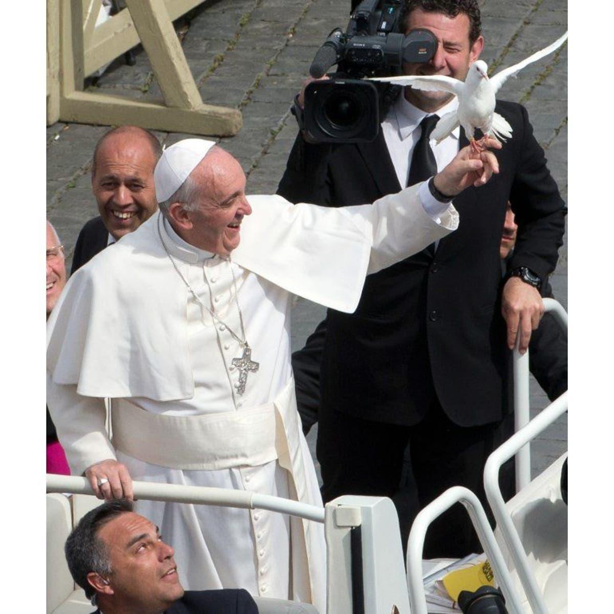 20 Frases Del Papa Francisco Sobre La Paz